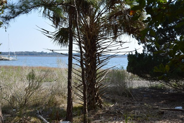 Resident S/D Lot - Beaufort, SC (photo 5)