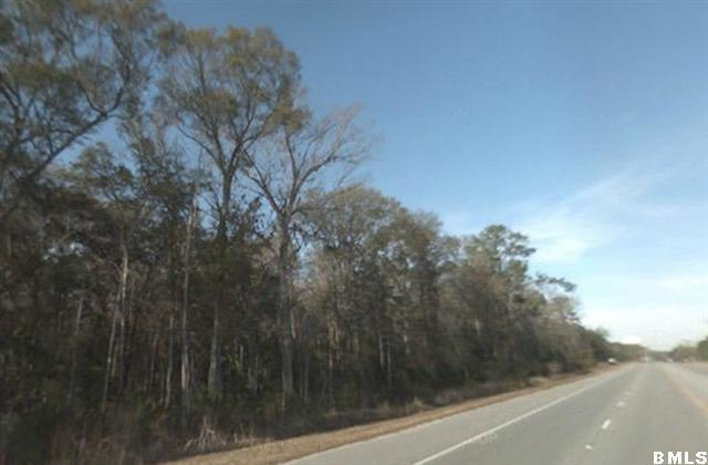 Acreage/Farm Plantation - Port Royal, SC (photo 2)