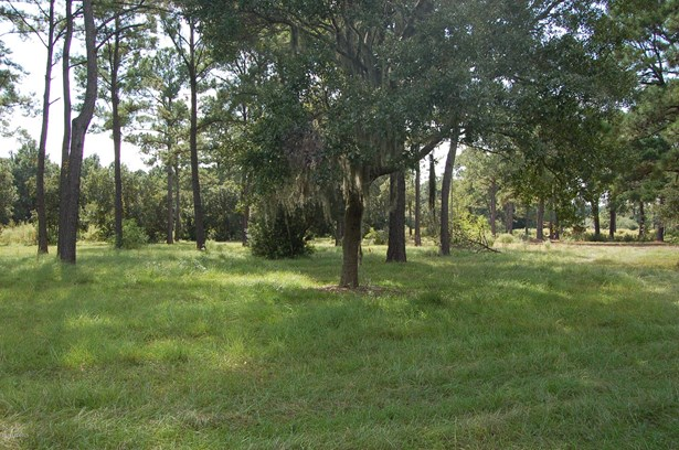 Resident S/D Lot - St. Helena Island, SC (photo 2)