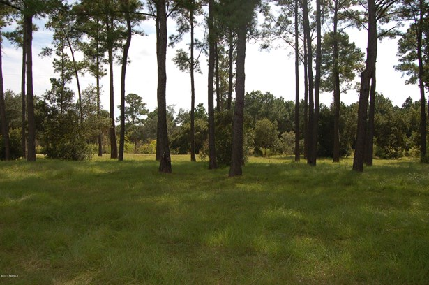 Resident S/D Lot - St. Helena Island, SC (photo 3)