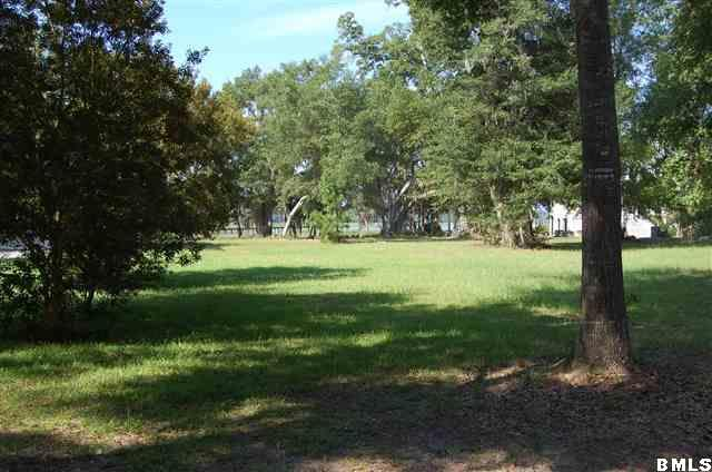 Resident S/D Lot - Ridgeland, SC (photo 5)
