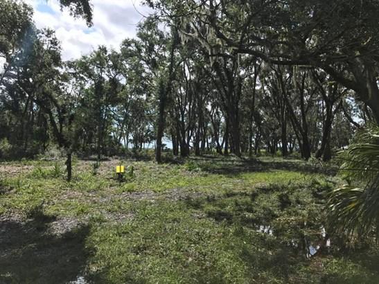 Acreage/Farm Plantation - St. Helena Island, SC (photo 2)