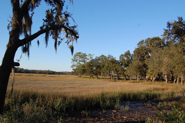 Acreage/Farm Plantation - St. Helena Island, SC (photo 3)
