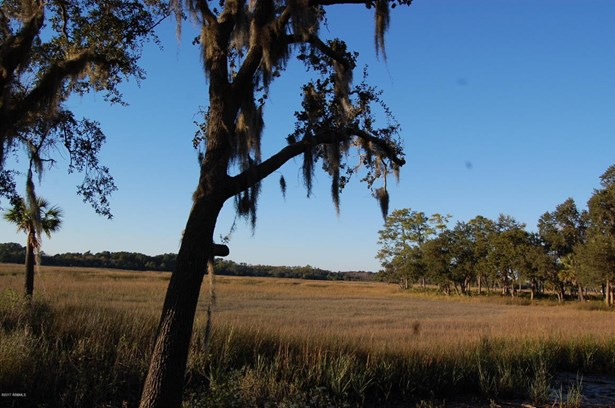 Acreage/Farm Plantation - St. Helena Island, SC (photo 4)