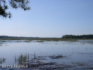 Resident S/D Lot - Seabrook, SC (photo 1)