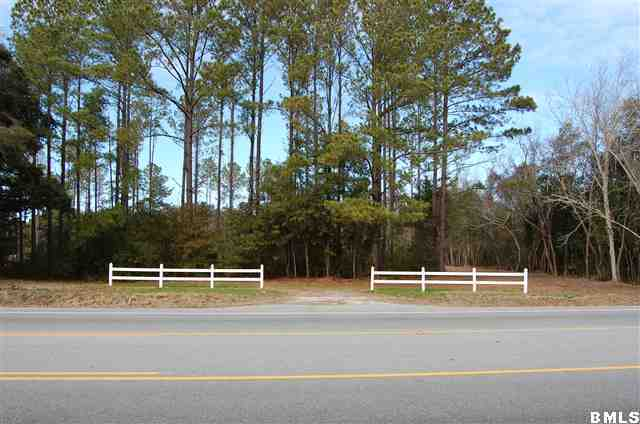 Acreage/Farm Plantation - St. Helena Island, SC (photo 1)