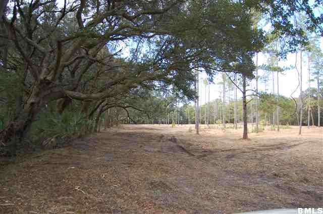 Acreage/Farm Plantation - St. Helena Island, SC (photo 2)