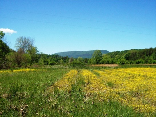 Lots and Land - Tellico Plains, TN