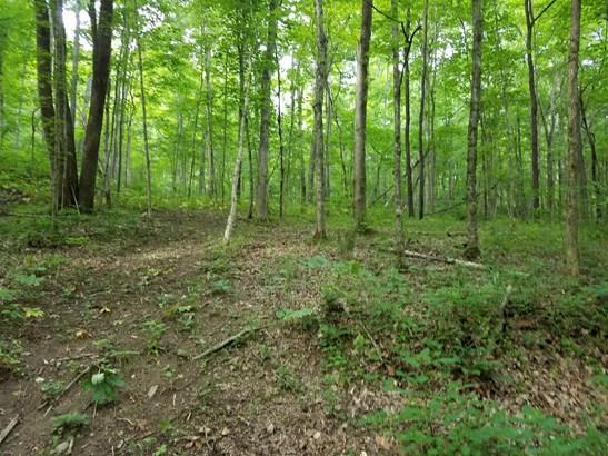 Lots and Land - Pegram, TN (photo 1)