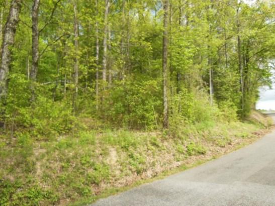 Lots and Land - Calhoun, TN