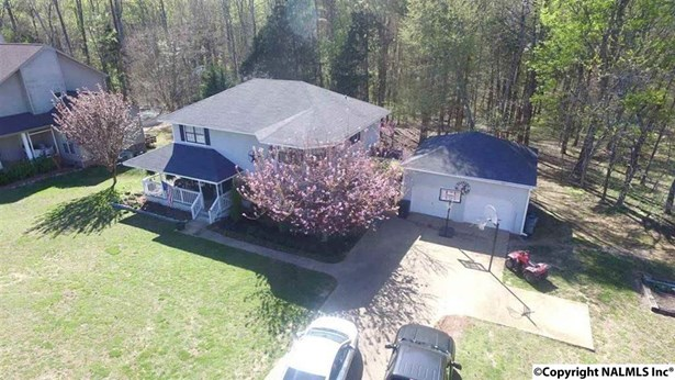 Residential/Single Family - ELKMONT, AL (photo 5)