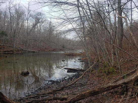 Lots and Land - Crossville, TN