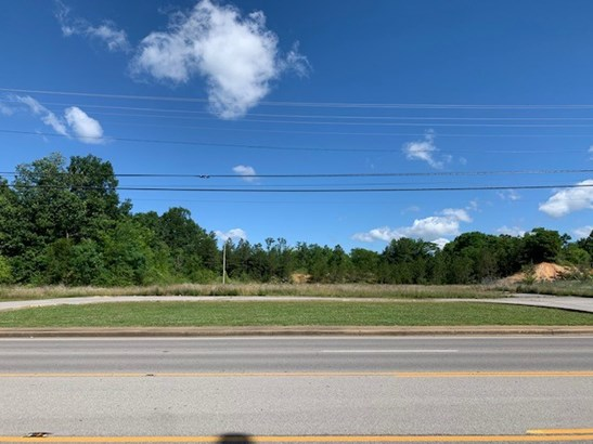 Lots and Land - Hohenwald, TN