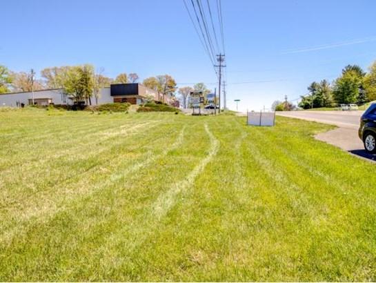 Lots and Land - Johnson City, TN (photo 3)