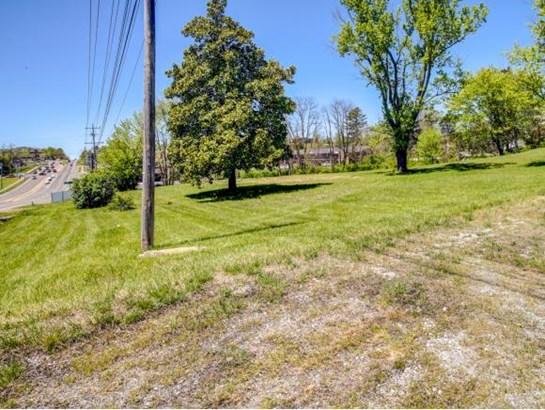 Lots and Land - Johnson City, TN (photo 5)