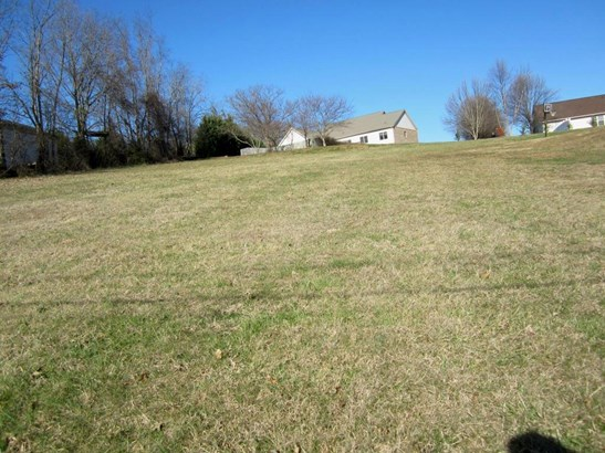Lots and Land - Kodak, TN (photo 3)