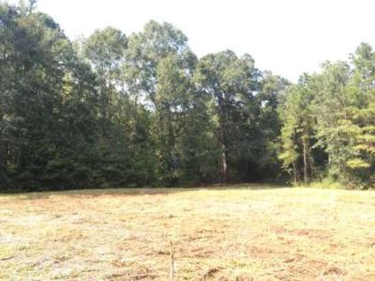 Lots and Land - Jayess, MS (photo 5)