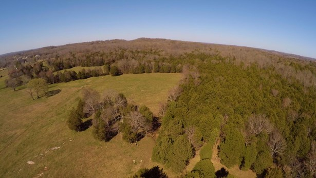 Lots and Land - Mount Juliet, TN (photo 4)
