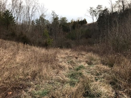 Lots and Land - Thorn Hill, TN (photo 3)