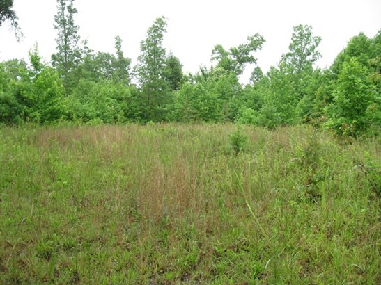 Lots and Land - CRAWFORD, TN (photo 5)