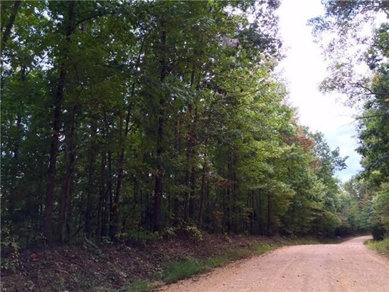 Lots and Land - Westpoint, TN (photo 1)