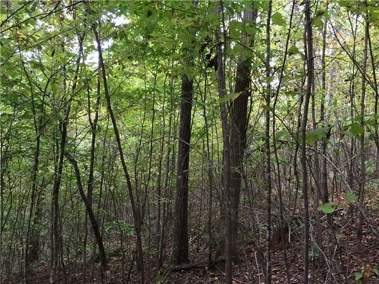 Lots and Land - Westpoint, TN (photo 3)