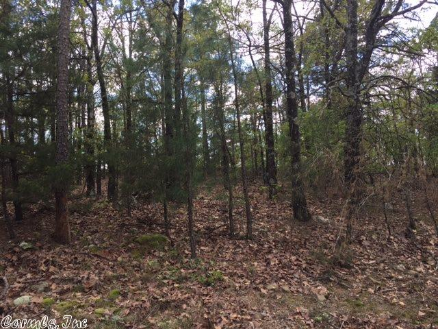 Lots and Land - Conway, AR (photo 2)