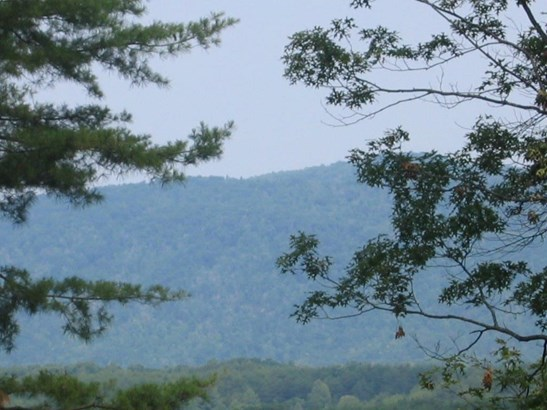 Lots and Land - Tellico Plains, TN (photo 3)