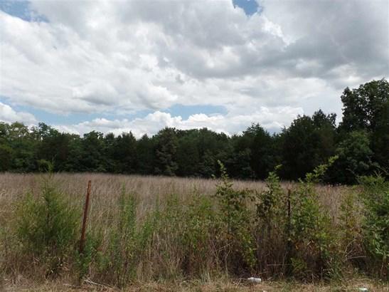 Lots and Land - Talbott, TN (photo 5)