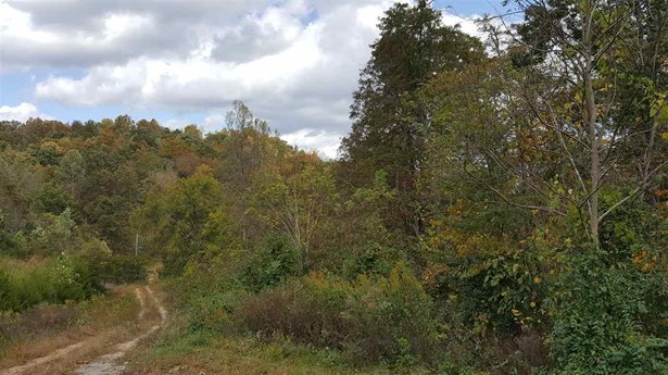 Lots and Land - Tazewell, TN (photo 2)