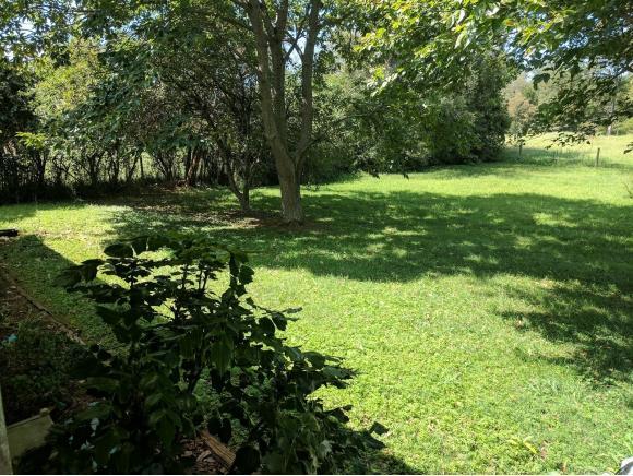 Residential/Single Family - Bristol, TN (photo 3)