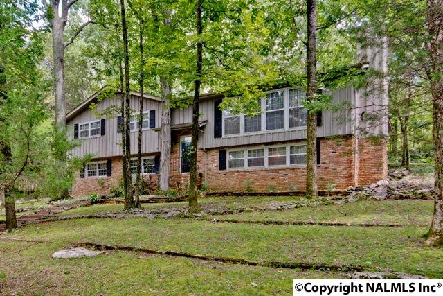 Residential/Single Family - HUNTSVILLE, AL (photo 1)