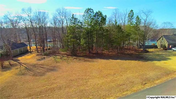Lots and Land - ROGERSVILLE, AL (photo 3)