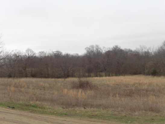 Lots and Land - Grove, OK (photo 4)