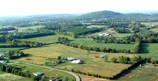Residential/Single Family - Unionville, TN (photo 1)