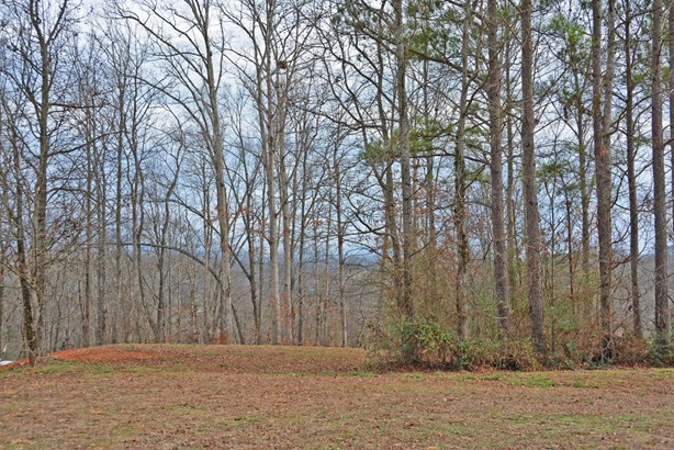 Lots and Land - Benton, TN (photo 4)