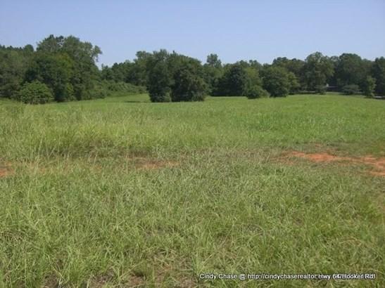 Lots and Land - Benton, TN (photo 4)