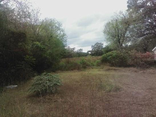 Lots and Land - Chickamauga, GA (photo 2)