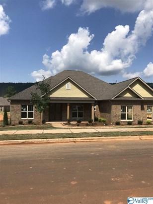Residential/Single Family - OWENS CROSS ROADS, AL