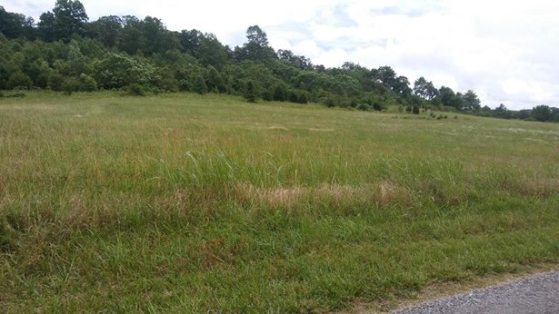 Lots and Land - Birchwood, TN (photo 1)
