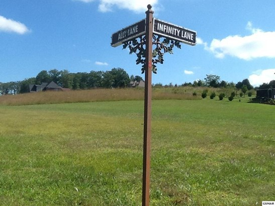 Lots and Land - Sevierville, TN (photo 3)