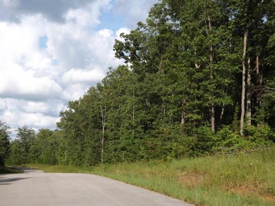 Lots and Land - Clarkrange, TN (photo 5)