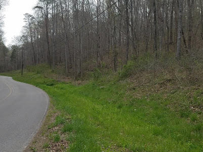 Lots and Land - Byrdstown, TN (photo 4)