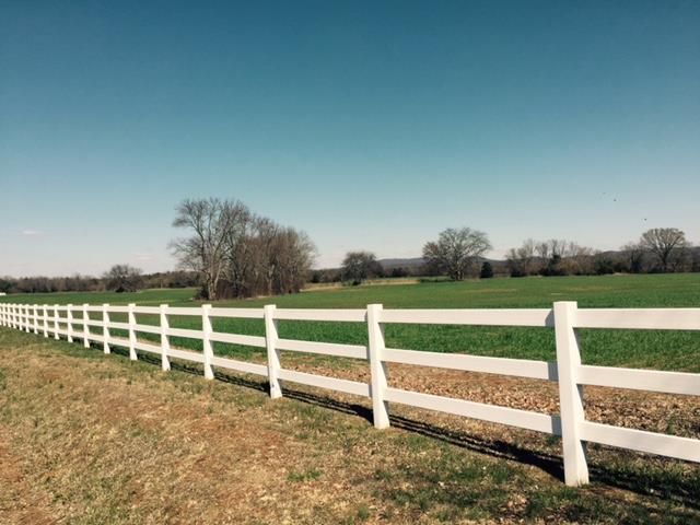 Lots and Land - Christiana, TN (photo 3)