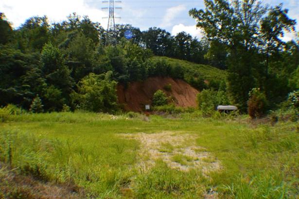 Lots and Land - Mc Donald, TN (photo 3)