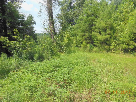 Lots and Land - Riceville, TN (photo 5)