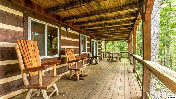 Residential/Single Family - Parrottsville, TN (photo 2)
