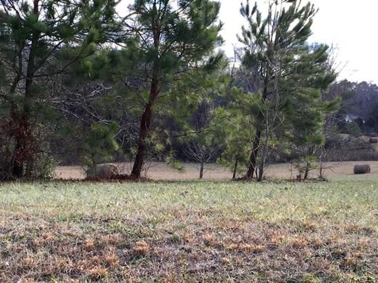 Lots and Land - Niota, TN (photo 2)