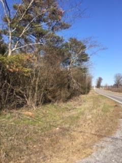 Lots and Land - Ider, AL (photo 1)