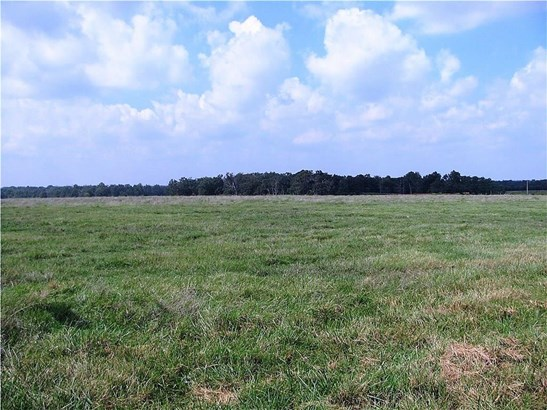 Lots and Land - Gravette, AR (photo 5)